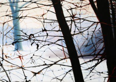 Hieronymus Proske_Verzweigungen,2,90x135 cm,2013 Kopie 2